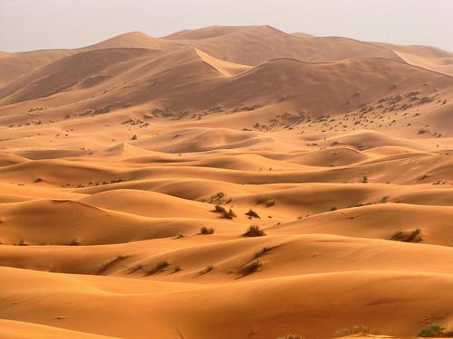Wydmy Erg Chebbi w Maroku