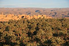 Panorama oazy Nkob, Maroko