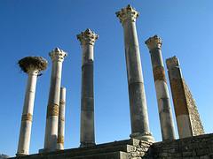 Ruiny Volubilis w Maroko