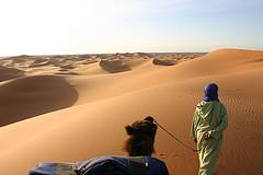 Trekking na pustynia w Maroku